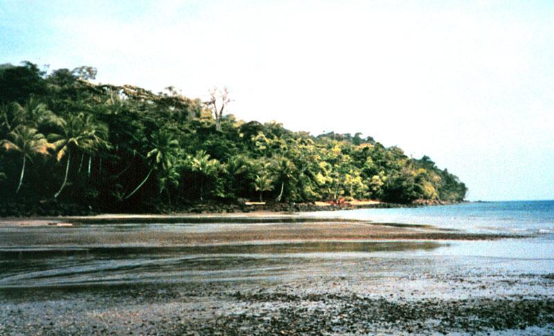 IslaGorgonaColombia